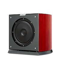 AudioVector SR SUB Super African Rosewood